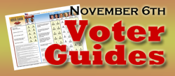 "Click on ""Candidates"" for your county PDF Voter Guide."
