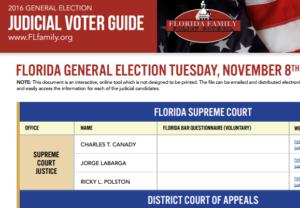 judicial-voter-guide-screenshot